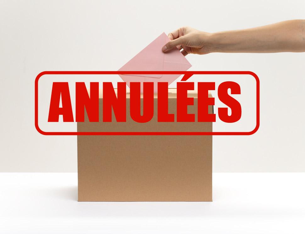 Demander l'annulation des élections avant le scrutin : pourquoi ? comment ?